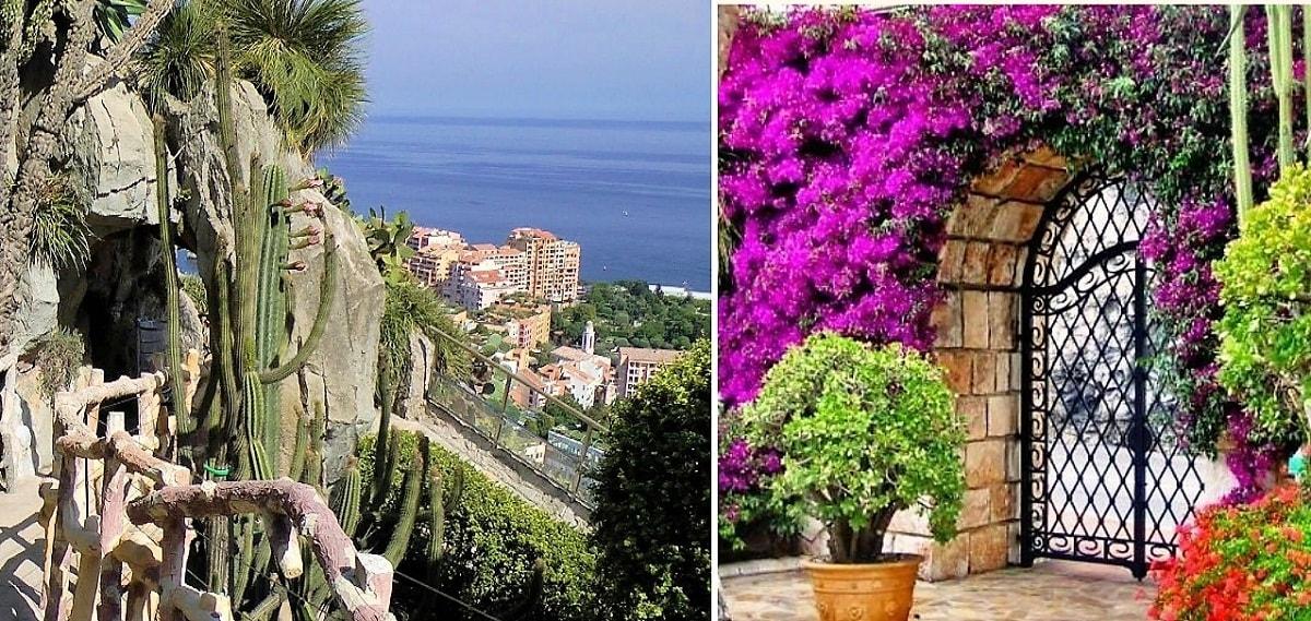 Monaco Exotic Garden